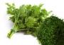 بررسي بازار سبزيجات خشک
