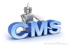 سيستم هاي مديريت محتوي (cms)