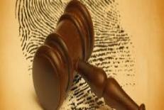 اقدامات تاميني در حقوق تطبيقي